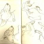 Sketch-Sept 13