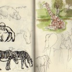 zoo sketches 7