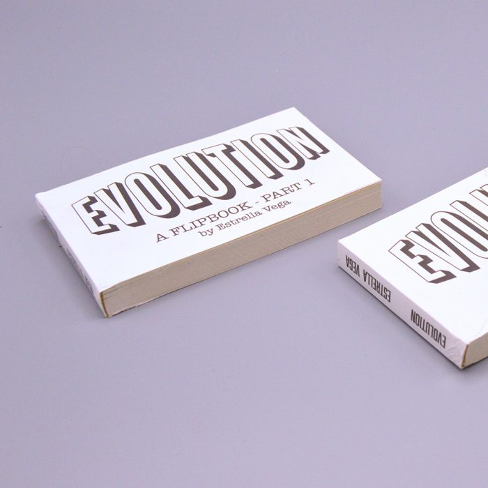 Evolution Flipbook